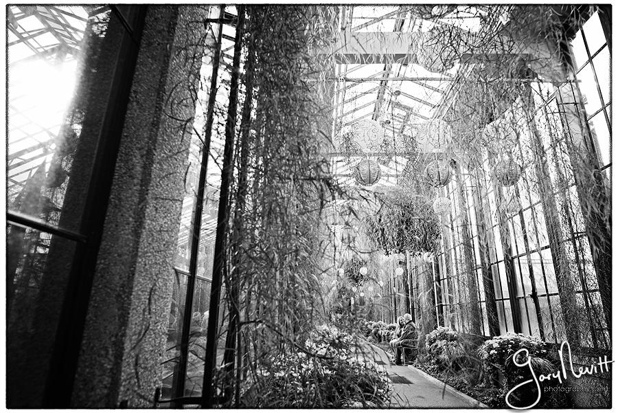 Brittin-Longwood Garden-Engagement-Portraits- Photography Gary Nevitt Photography-1079